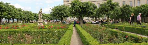 Rosengarten © Ralf Saalmüller